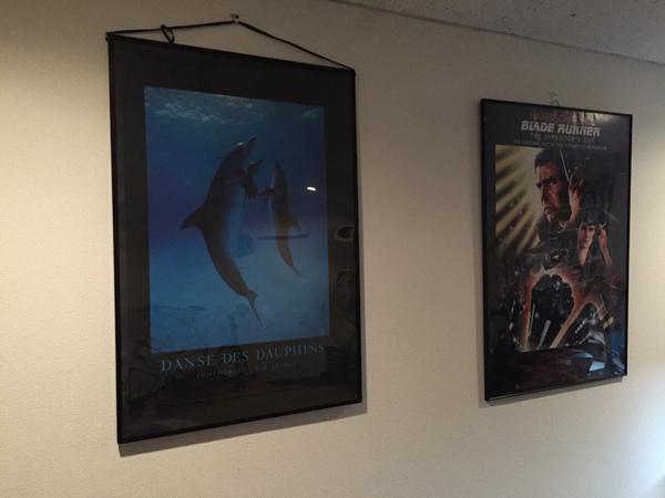 イルカのポスター