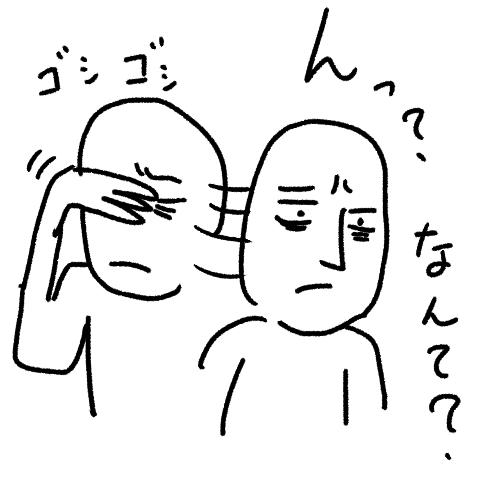 nidomi2